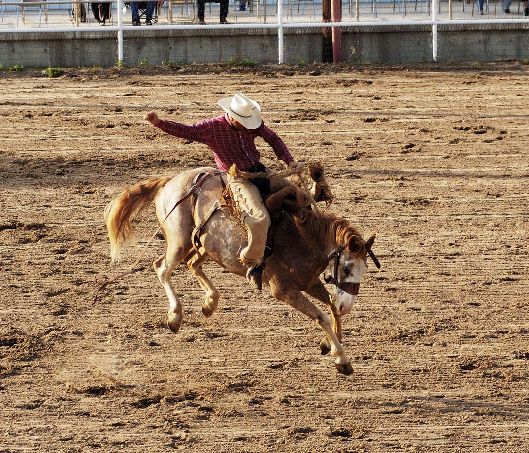 Junction Rodeo Junction Tx